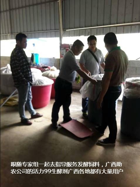 百色市靖西市生态养殖培训班3.jpg