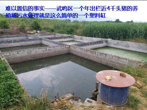 养殖场污水处理步骤53.png