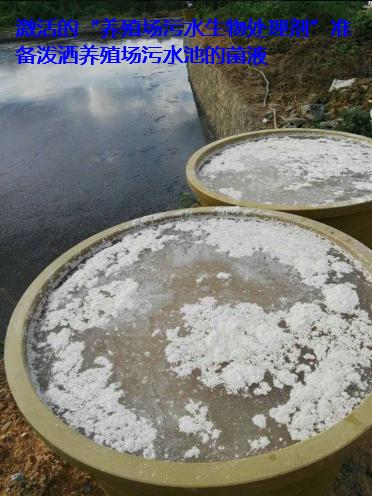 养殖场污水处理步骤6.png