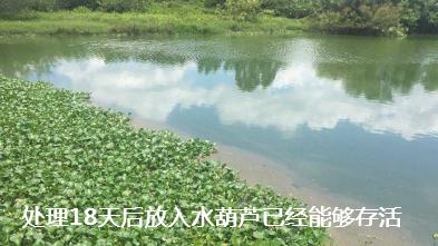 养殖场污水处理步骤10.png