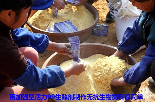 生物发酵饲料4.png