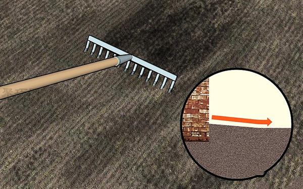 草坪种植与养护管理方法 草坪籽怎么种出漂亮的草坪 3