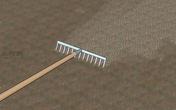 草坪种植与养护管理方法 草坪籽怎么种出漂亮的草坪 7