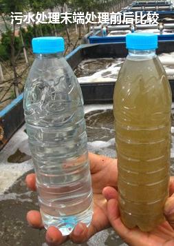 污水处理末端比较.png