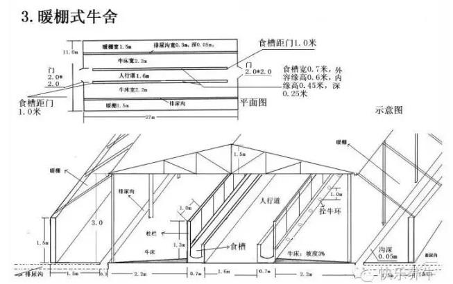 北方暖棚式牛舍平面设计图纸(仅供参考)
