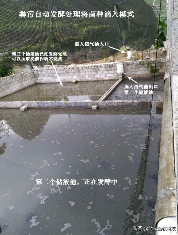 粪污自动发酵处理将菌种滴入模式.jpg