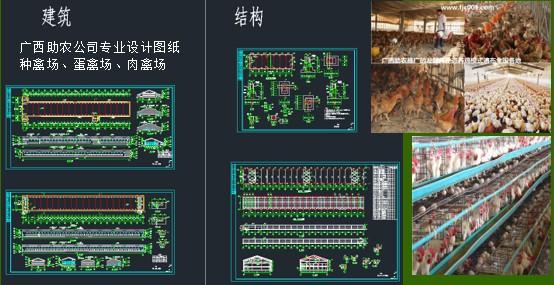 家禽养殖场建设1.jpg