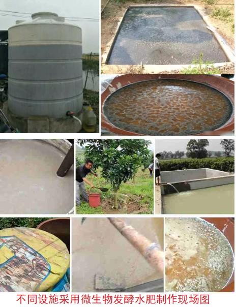 不同�O施采用微生物�l酵水肥制作�F��D.jpg