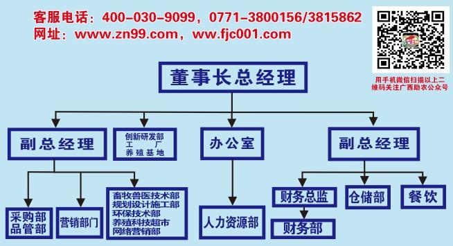 1604441176386167.jpg